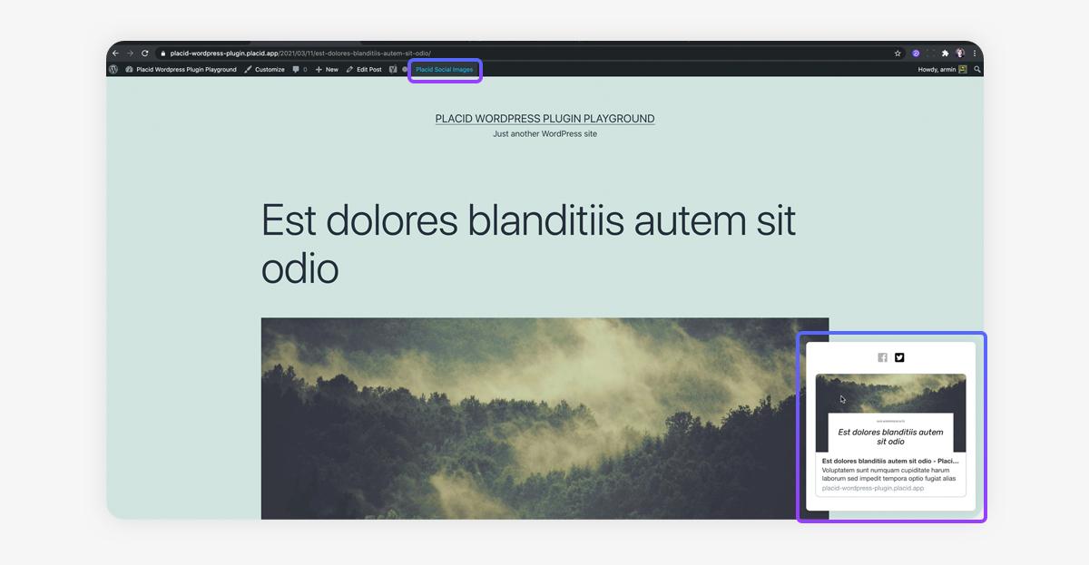Social Card Preview in the Placid WordPress plugin